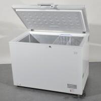 congelatore pozzetto lt. 300 b